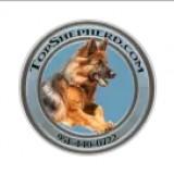 topshepherd